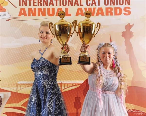 BEST ADULT CAT ICU 2018